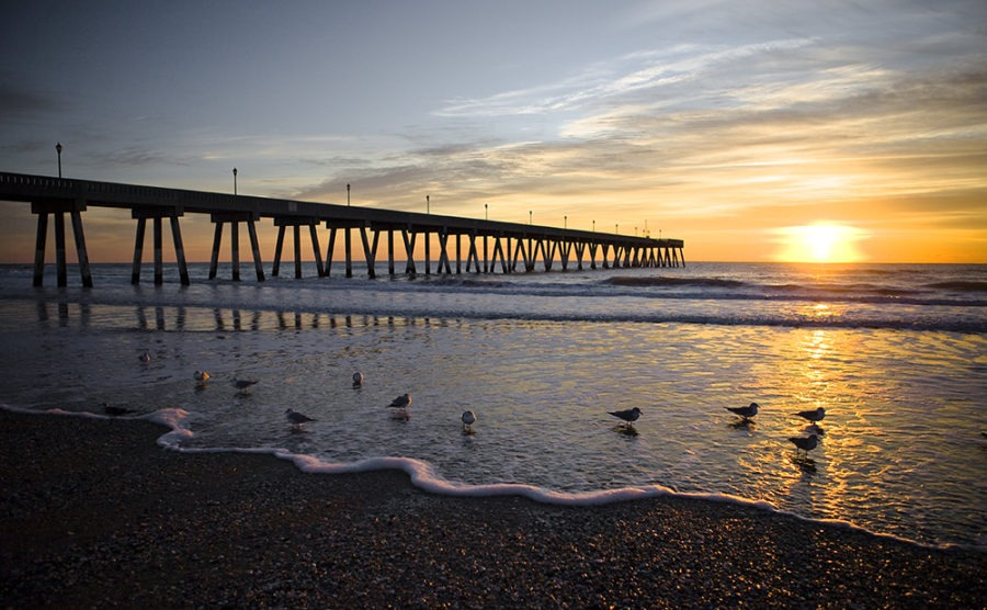 """""""Morning Birds"""" Coastal Art by EDA Surf. Morning birds in the glow of Orange sunbeams speckle the waters edge north of Johnny Mercer's fishing pier Wrightsville Beach, North Carolina."""