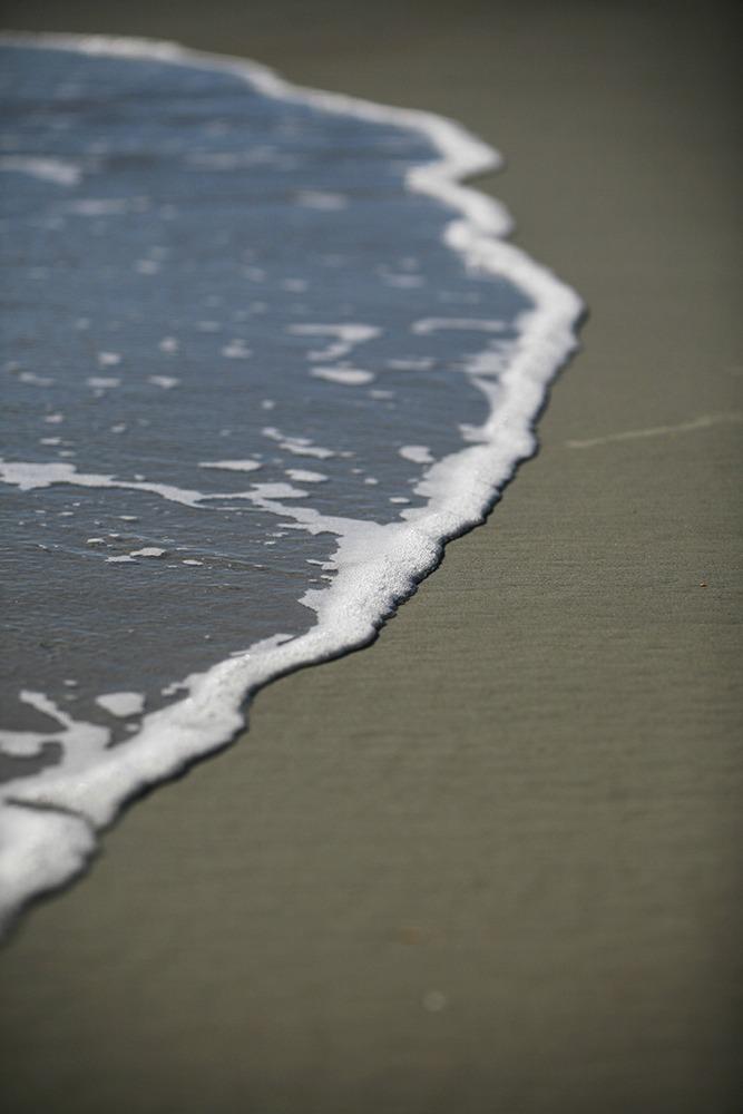 """""""Land & Sea"""" Coastal Art by EDA Surf"""