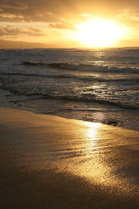 """""""Golden Sands"""" Coastal Art by EDA Surf"""