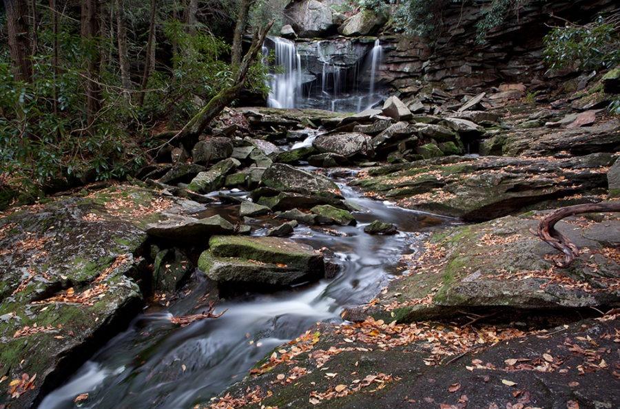"""Fall Streams"" Waterfall Art by EDA Surf"