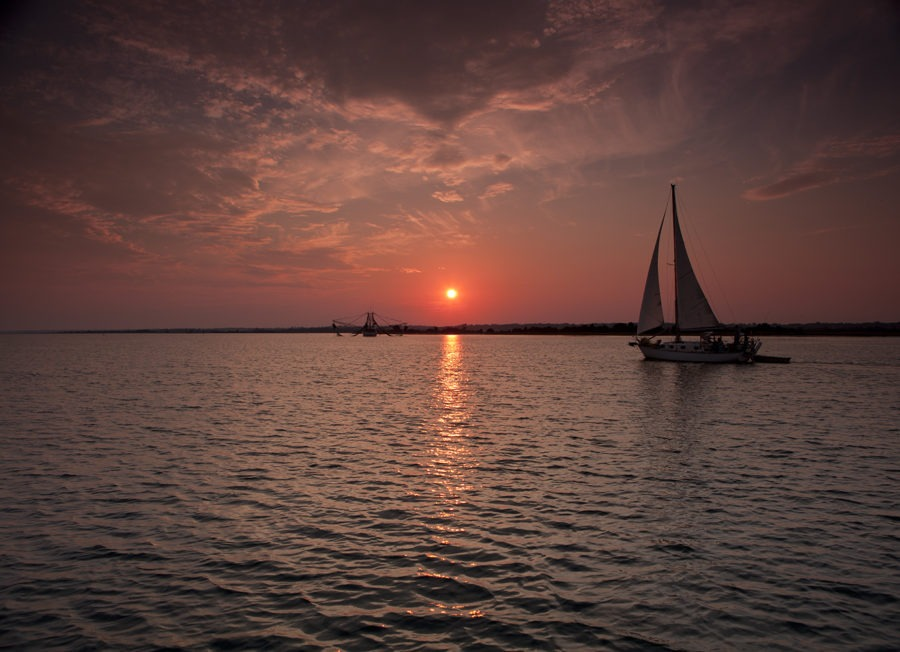 """Sailing With Life"" Coastal Art by EDA Surf."