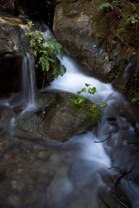 """""""Passive Stream"""" Waterfall Art by EDA Surf"""