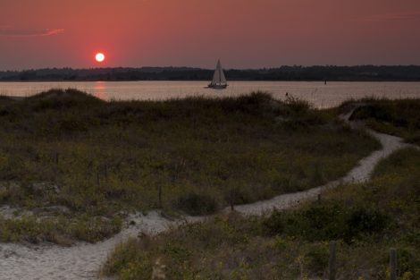 """Sunset Path"" Coastal Art by EDA Surf"