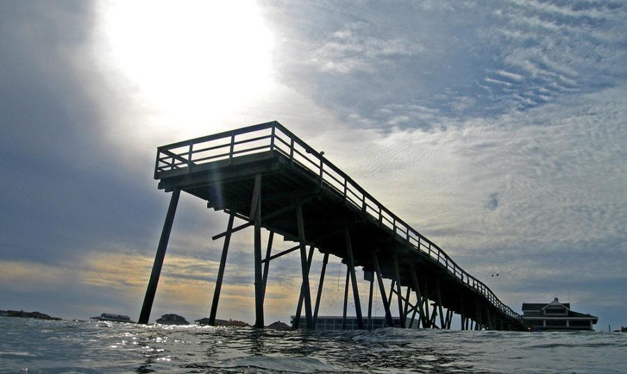 """Old Pier"" Coastal Art by EDA Surf"