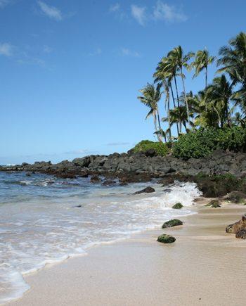 Tropical Lagoon Art