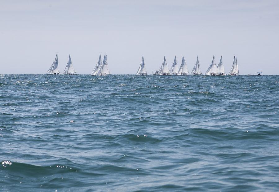 regatta of summer coastal art