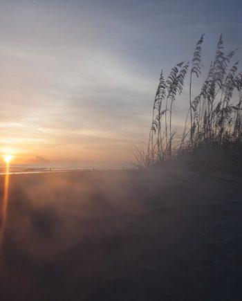 fog of dawn coastal art
