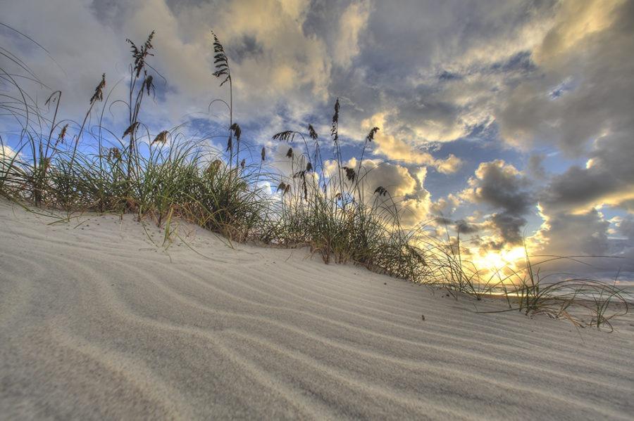 sands of time coastal art