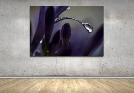 339_Purple_Droplets_WALL
