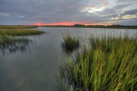 marshy reds sunset art print