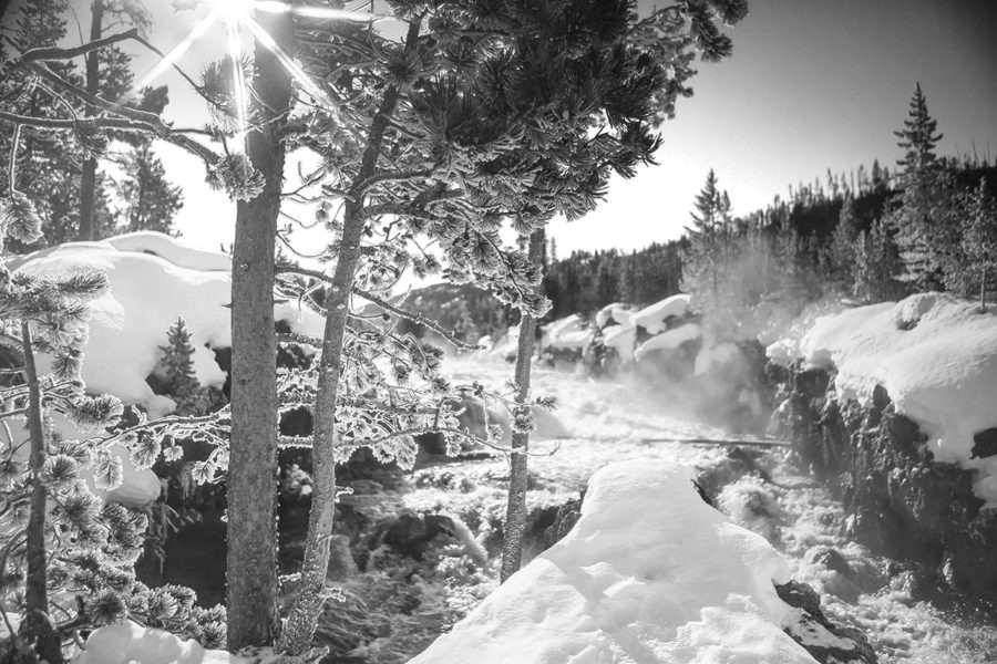 Winter Paradise Black and White Photography